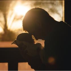 Отцовство: 300 дней после расторжения брака